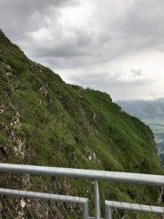Nebelhorn3.jpg